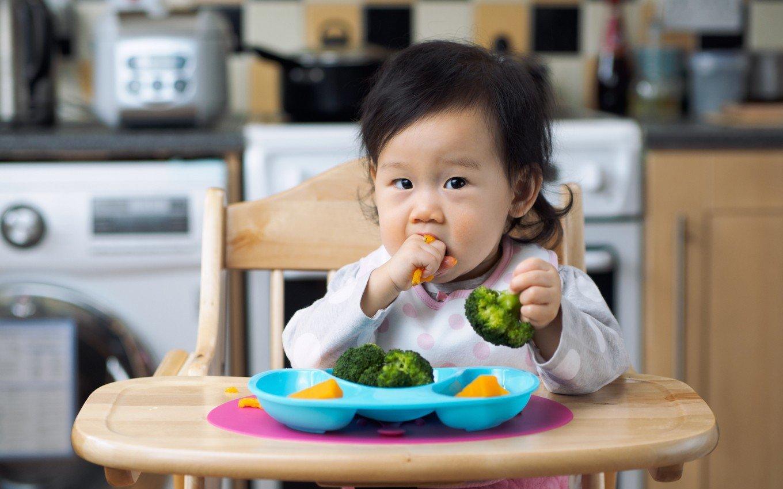 Ở mỗi độ tuổi, mẹ cần có những điều chỉnh chế độ dinh dưỡng hợp lý cho bé Nguồn ảnh: isuckhoe.net